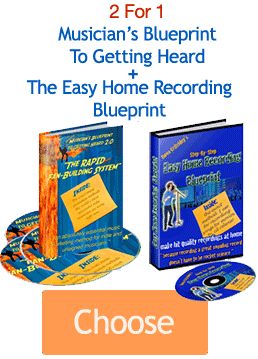 Get both Musicians Blueprint guides here